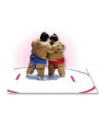 Used Sumo Wrestling